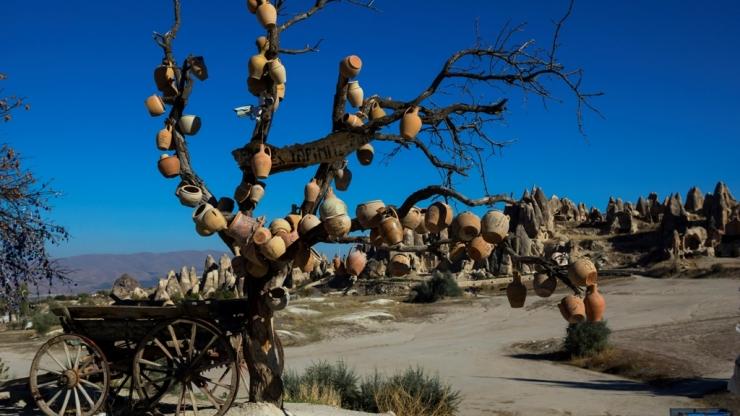 Горшки на дереве