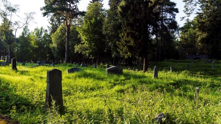 Сортавала. Финское кладбище 4