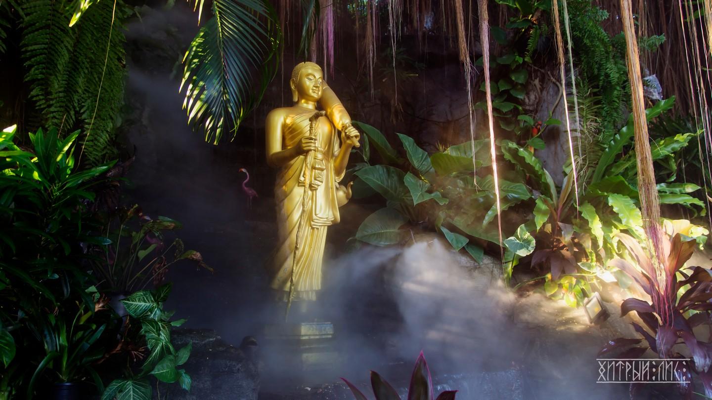 Будда в клубах пара