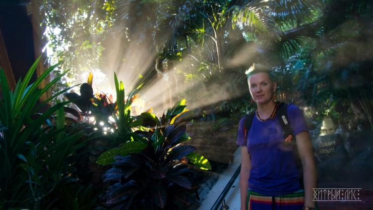 Солнечные джунгли