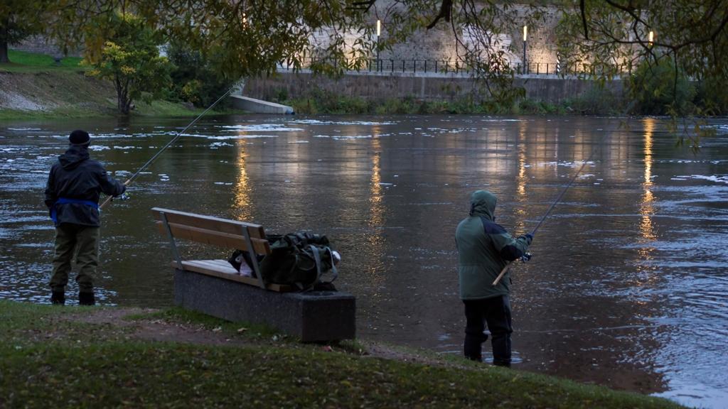 Рыбаки в сумерках