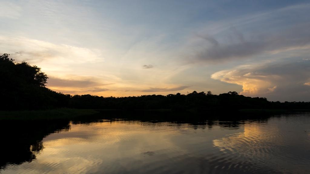 Закат на Амазонке 1