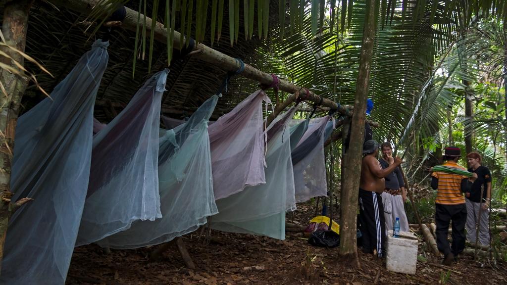 Ночёвка в джунглях