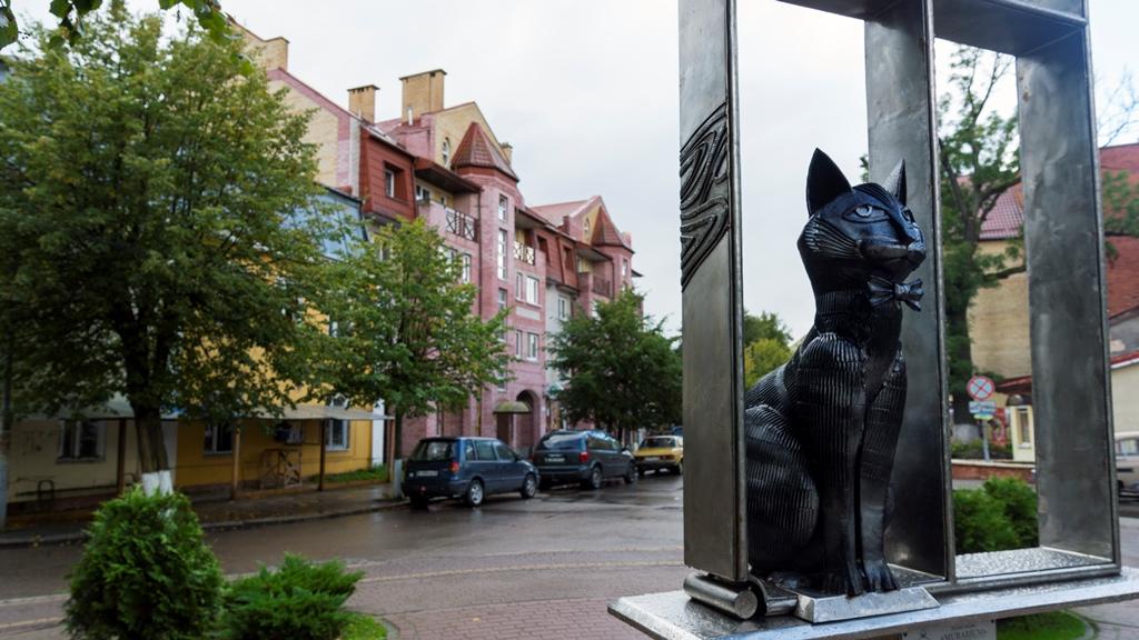 Памятник-зеленоградским-котам