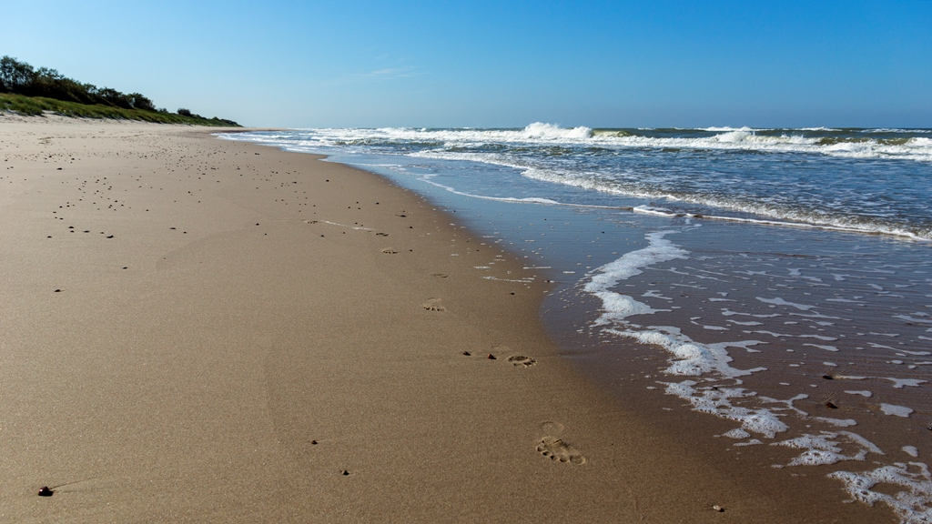 Следы-на-песке